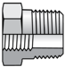 BSPT Reducing Adapter