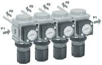Mini-Common-P1-Regulator