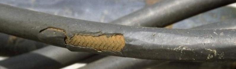 hose-abrasion-damage.png